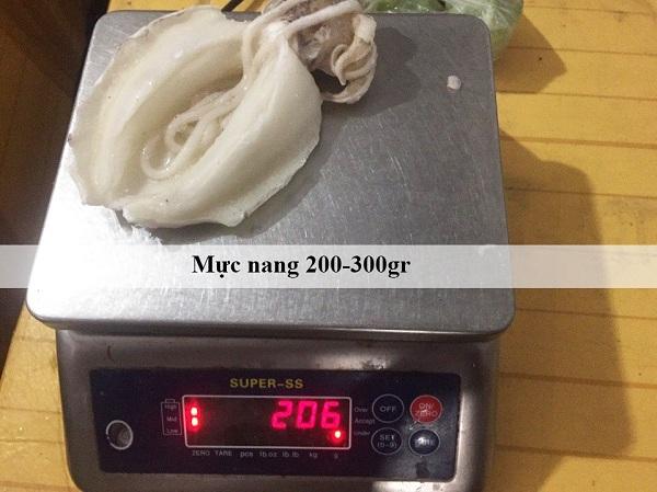 mực nang công ty 24h seafood