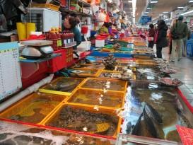 hải sản tươi sống tphcm