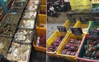 vựa hải sản tươi sống tại tphcm