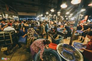 chợ nào bán hải sản rẻ ở tphcm