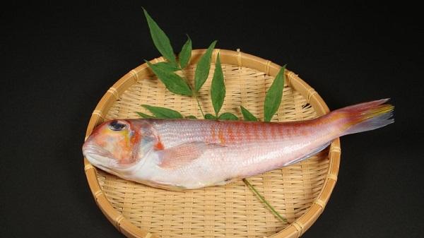 những loại cá không nên ăn