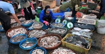chợ hải sản hà nội