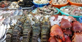 cung cấp hải sản tươi sống tại hà nội