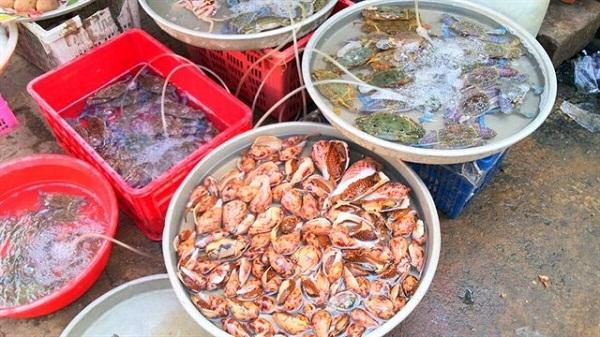 giá hải sản tươi sống tại tphcm